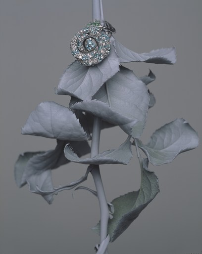 BRIGITTE NIEDERMAIR - Dior