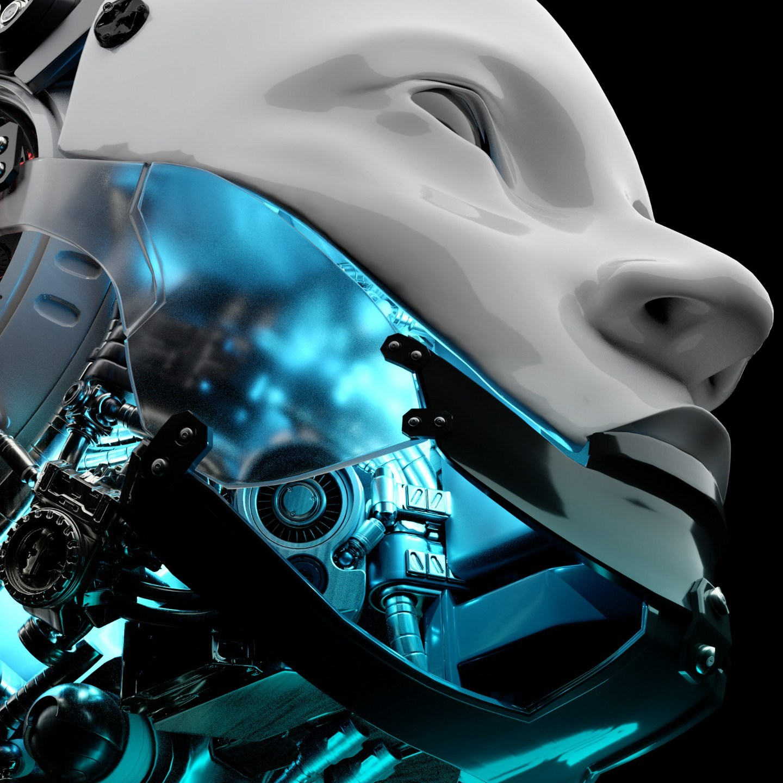 Sean Freeman | Ethical Machines