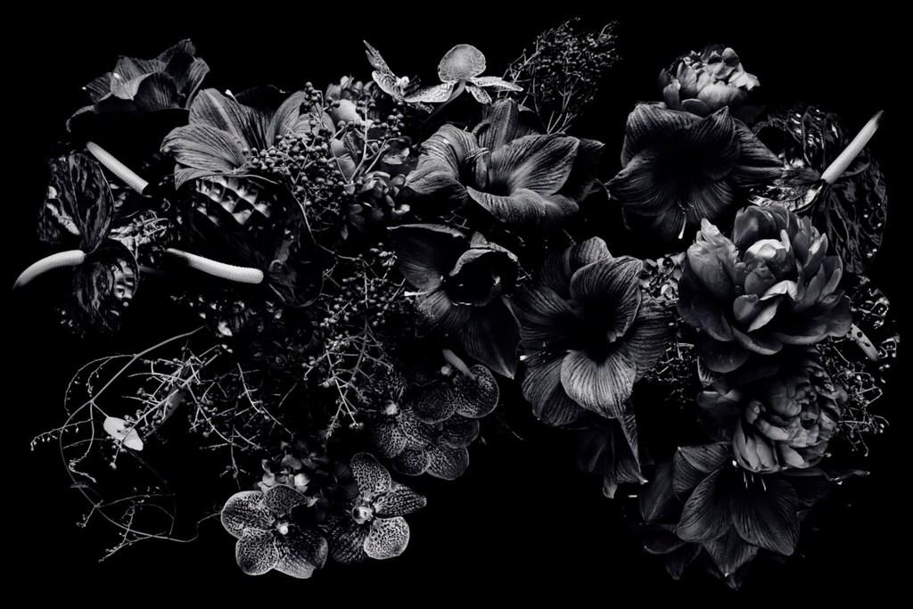JamieChung_BA_BlackFlowers.jpg