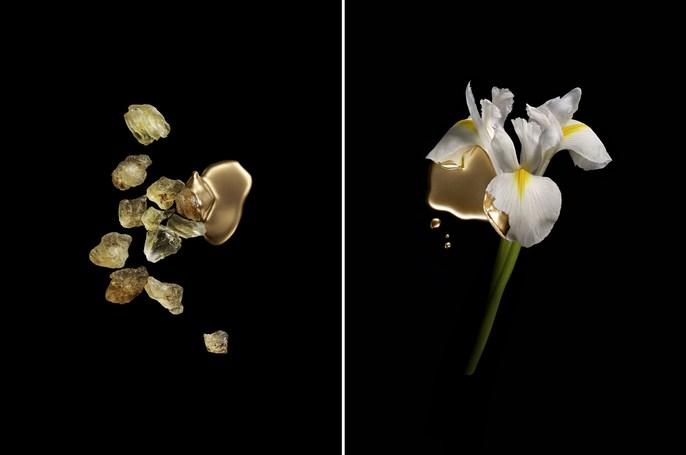 Valentino - Gold ingredients